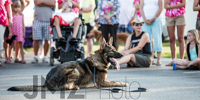 NorthlakeVetClinic-Party-20150815-82
