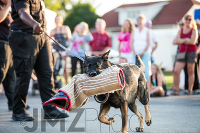 NorthlakeVetClinic-Party-20150815-199