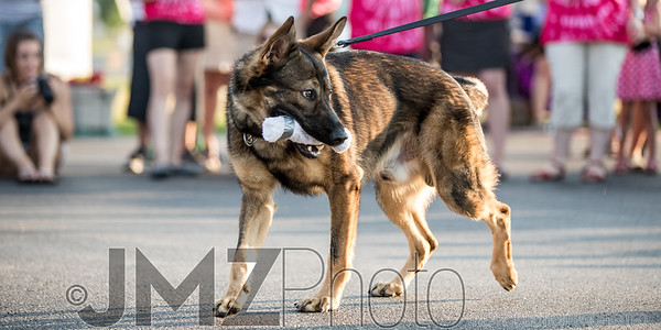 NorthlakeVetClinic-Party-20150815-73