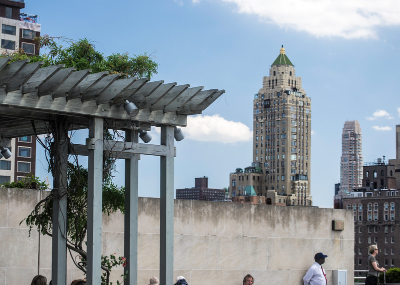 View from the top of the Metropolitan Museum
