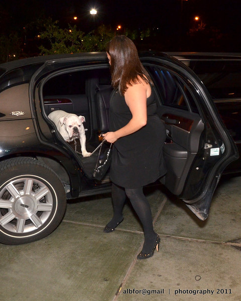 """""""Sherman"""" steps out of the Limo"""