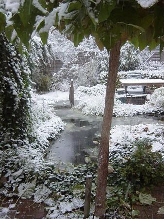October Snow!