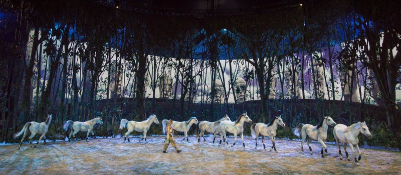 OYDSSEO–the stunning Cirque meets horses–by Cavalia coming to Orange County