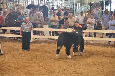 Ohio State Fair 2012 (23 of 88)