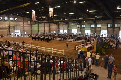 Ohio State Fair 2012 (30 of 88)