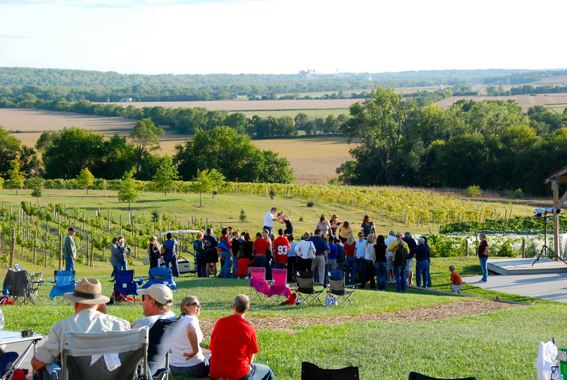 View from the porch: Grape stomping contest.