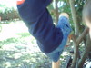 If I had been outside, I would have gently redirected this boy from climbing the small tree.