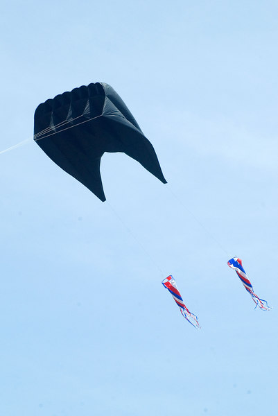 "<font size=""3"">This big one was finally aloft.  Even though the kite was black, it was trailed by red, white and blue tails.</font>"