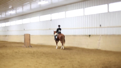 Piper ~ Oasis flat canter group B