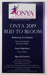 onya-002