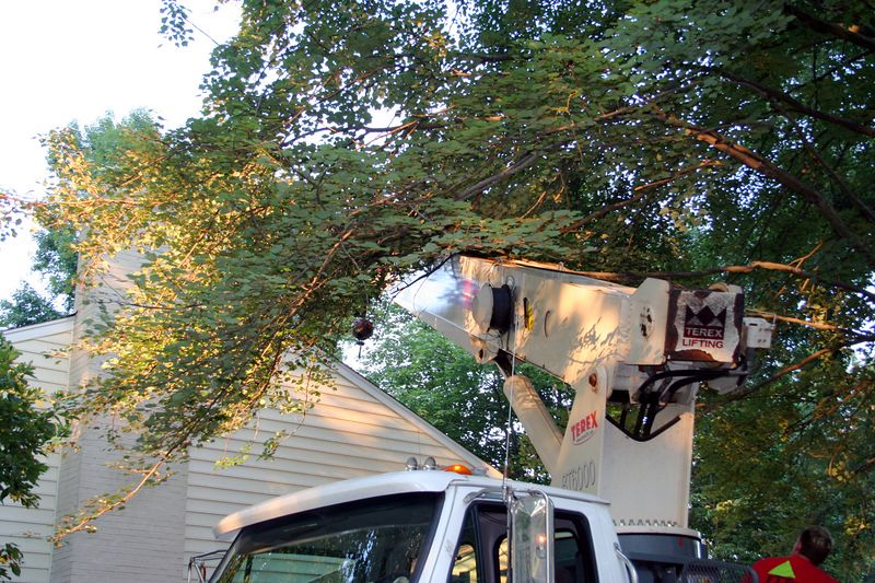 Bringing the boom around under the branches and into position!