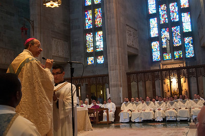 Ordination-0742