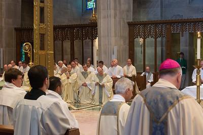 Ordination-0393
