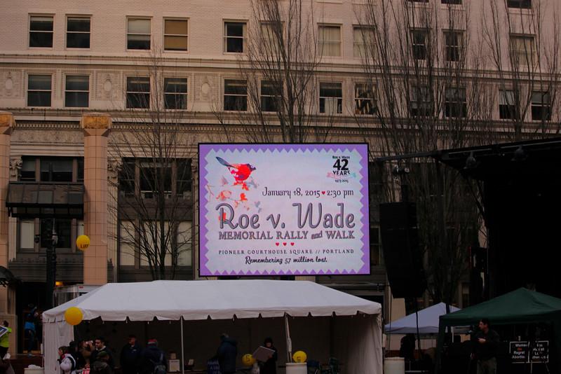Roe vs. Wade 2015