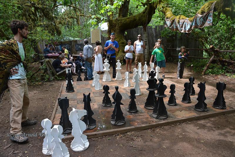 Super-Sized Chess Match