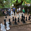Super-Sized Chess Match