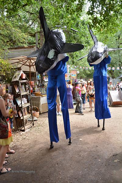 Oregon Country Fair - Veneta, OR (2014)