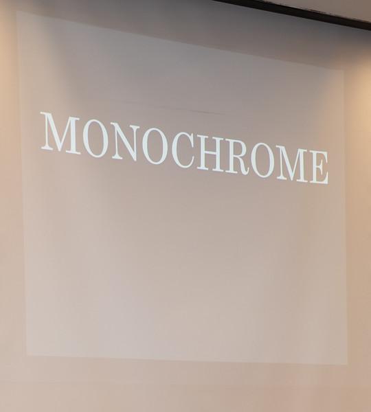 Monochrome Category