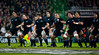 The New Zealand All Blacks preform their famous pre match haka before the International rugby test with Ireland against the New Zealand All Blacks at Aviva Stadium Dublin. November 2010