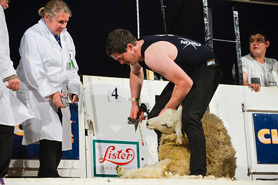Sean Kerlin representing Northern Ireland at the Golden Shears World Championships. On his way to 2nd place in the All Ireland Senior Shearing.