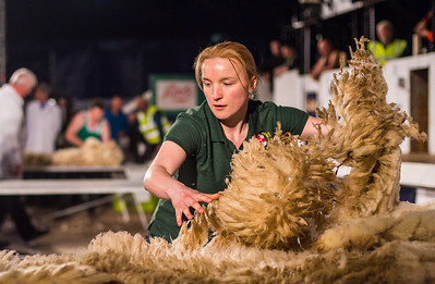 Jane Harkness Bones of Atrim representing Northern Ireland at the Golden Shears World Championships. In action during the Wool Handling heats.
