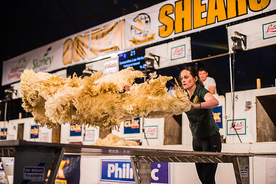 Caryn Webster of Larne representing Northern Ireland at the Golden Shears World Championships. In action during the Wool Handling heats.