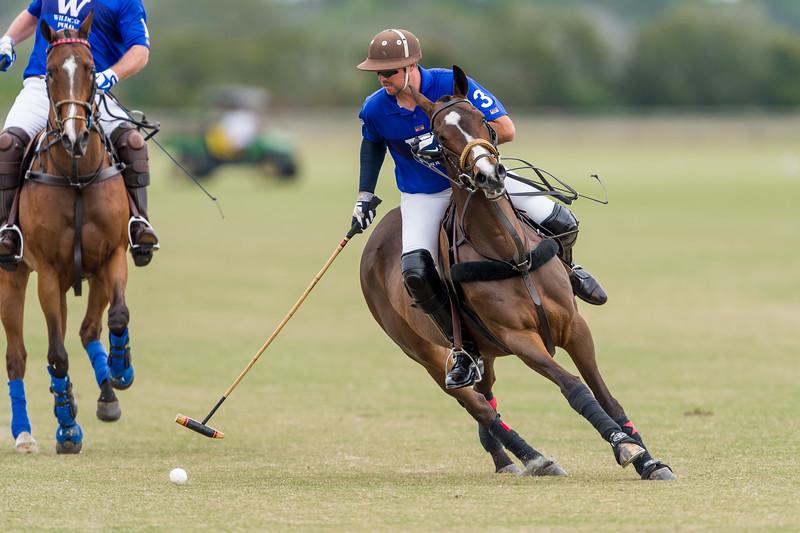 Sarasota Polo Club 01/19/2014
