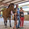 SRd1709_3465_Horses