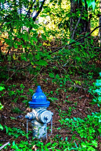 SRd1709_3403_hydrant_atlanta
