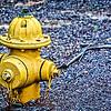 SRd1709_3410_hydrant_atlanta