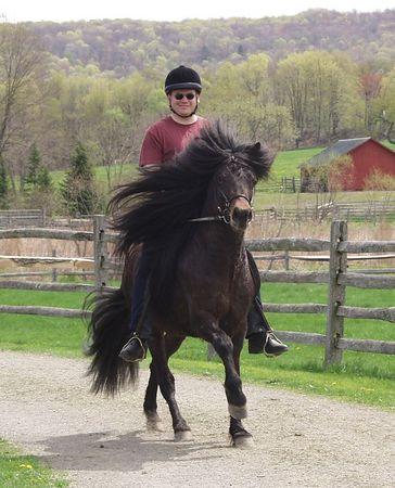 Mill Farm Ride - May, 2003