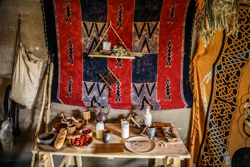 Largs Viking Festival 2014