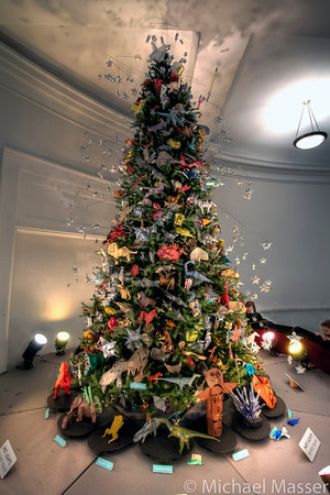 American-Museum-of-Natural-History-Christmas-Tree-2011-HDR