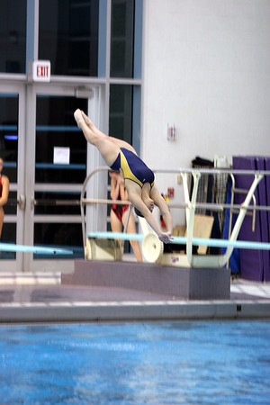 Diving at Ben Davis