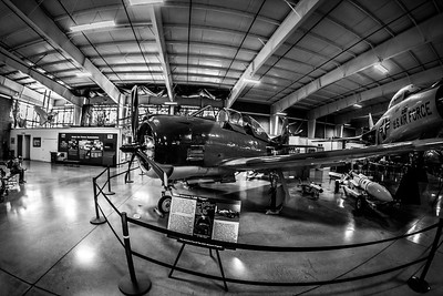 20130413_StevePetersonPhotography_0249