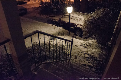 Snow, January 2014