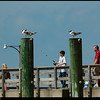 Spring Break 2008<br /> St Simons Island, Georgia