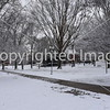 Ole Miss Campus Photo ©Joey Brent