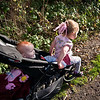 Wants to go back in the pushchair