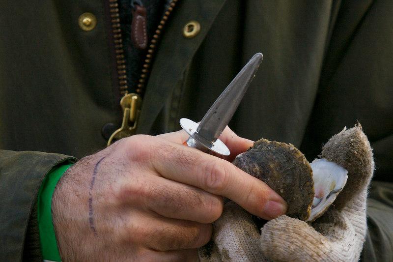 Oyster, got it.  Oyster knife, got it!