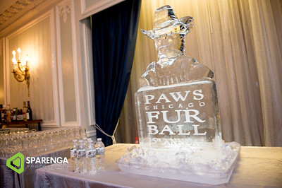 PAWS Fur Ball 2016