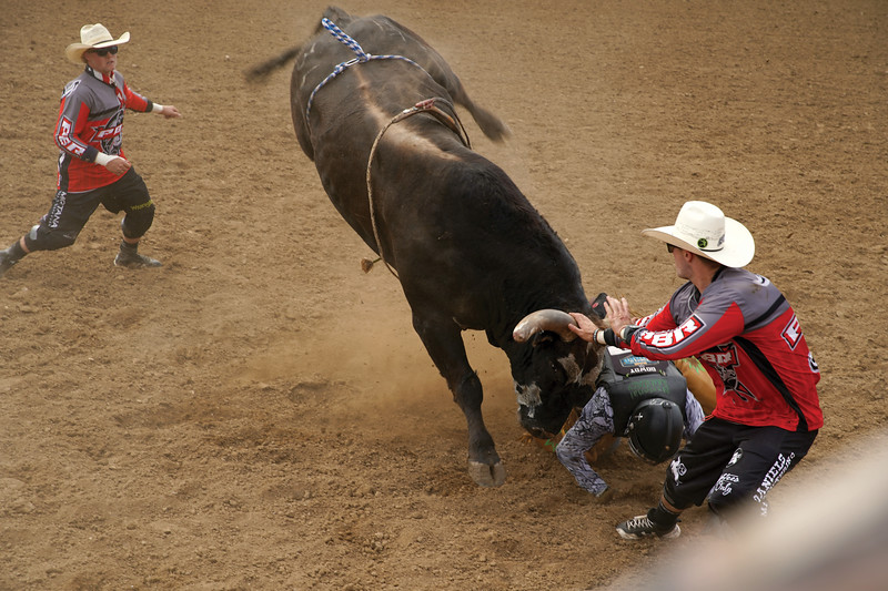Matthew Gaston | The Sheridan Press<br>Bullfighter Ely Sharkey, from Nebraska, steps in to prevent catastrophe during the PBR Forever West competition in Sheridan Saturday, May 30, 2020. Do to COVID-19 restrictions the top 30 bull riders in the country competed with no spectators.