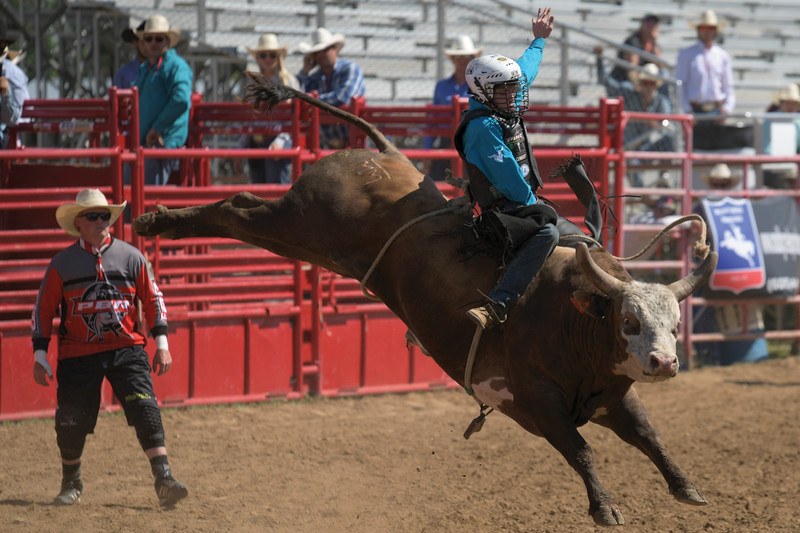 Matthew Gaston | The Sheridan Press<br>Playboy Bond gave it his all but could not shake bull rider Dylan Smith during the PBR Forever West competition Saturday, May 30, 2020.