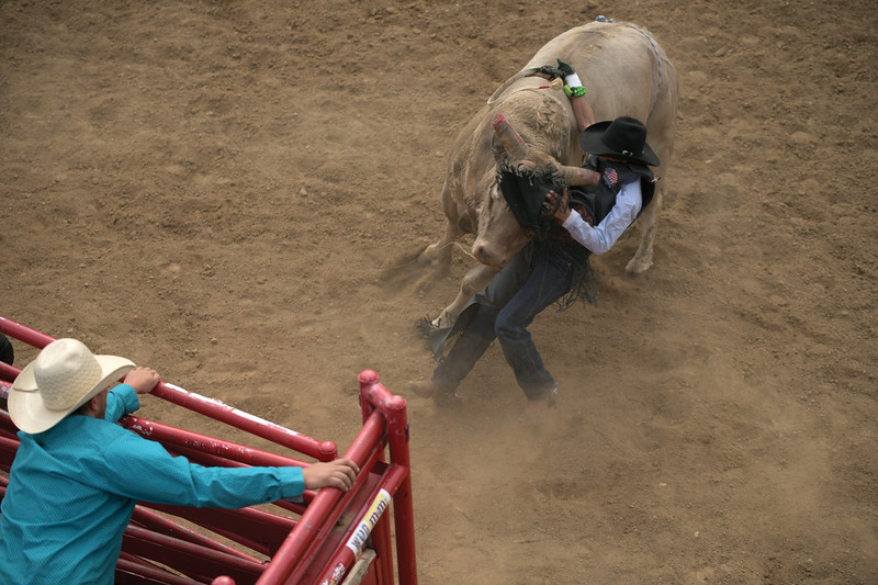 Matthew Gaston | The Sheridan Press<br>513 puts a horn in the chest of bull rider Luis Blanco during  the fourth round of the PBR Forever West competition at the Sheridan County Fairgrounds Saturday, May 30, 2020.