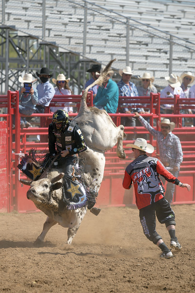 Matthew Gaston | The Sheridan Press<br>Montana native Matt Triplett dominated the second round with his 88 point ride on Big Block during the PBR Forever West competition Saturday, May 30, 2020.