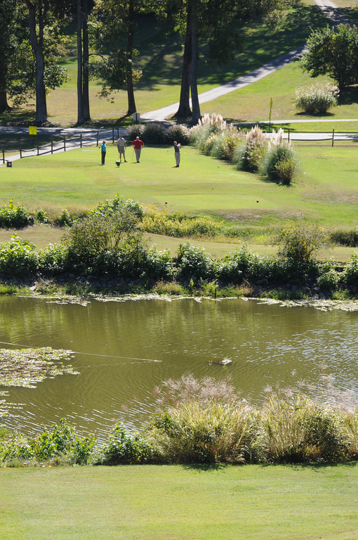 Golf-2009-025