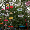 Beautiful parasails hang from the trees in Dulcimer Grove. (Howard Pitkow/for Newsworks)