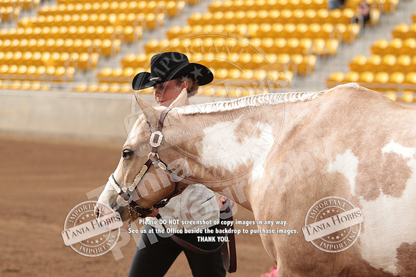 Wednesday Showmanship Tania