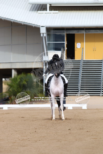 PHAA Emma Dressage Sunday