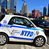 I guess NYPD  has some very small police.